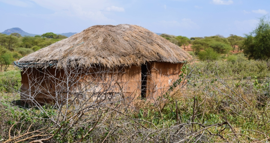 How Anna Letaiko got her land