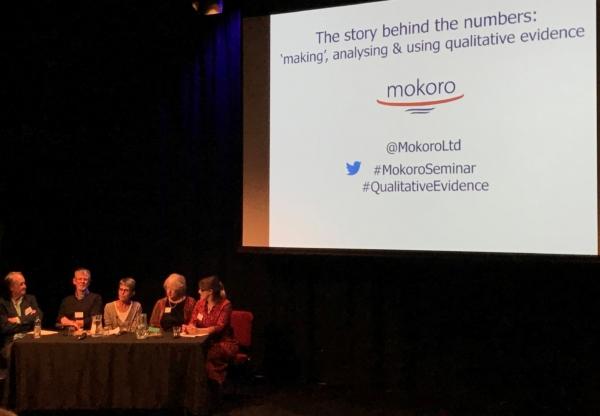 Mokoro host seminar on qualitative evidence