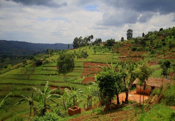 Land tenure regularisation in  Rwanda