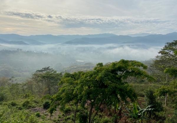 WFP Country Strategic Plan Evaluation, Timor-Leste